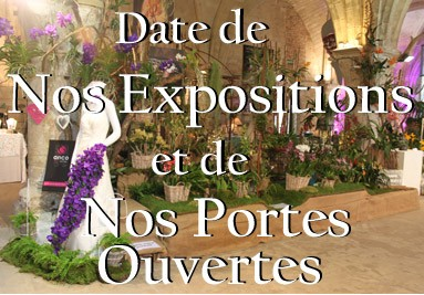 Nos expositions et nos portes ouvertes