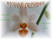 Ryanne Orchidée