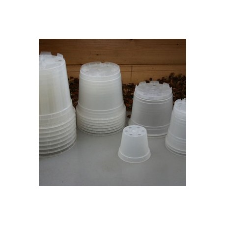 Pots Transparents Ø 12 cm