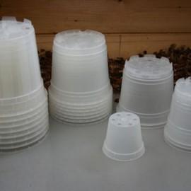 Pots Transparents Ø 8,5 cm
