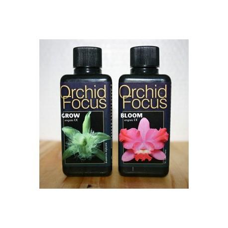 Engrais Orchid Focus 100 ml (bloom fleur)